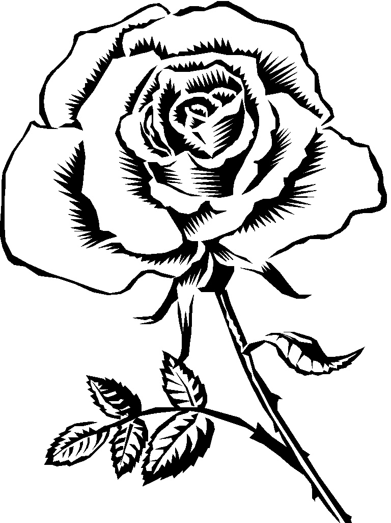 Rose Clipart Black And White | Clipart Panda - Free ... (768 x 1026 Pixel)