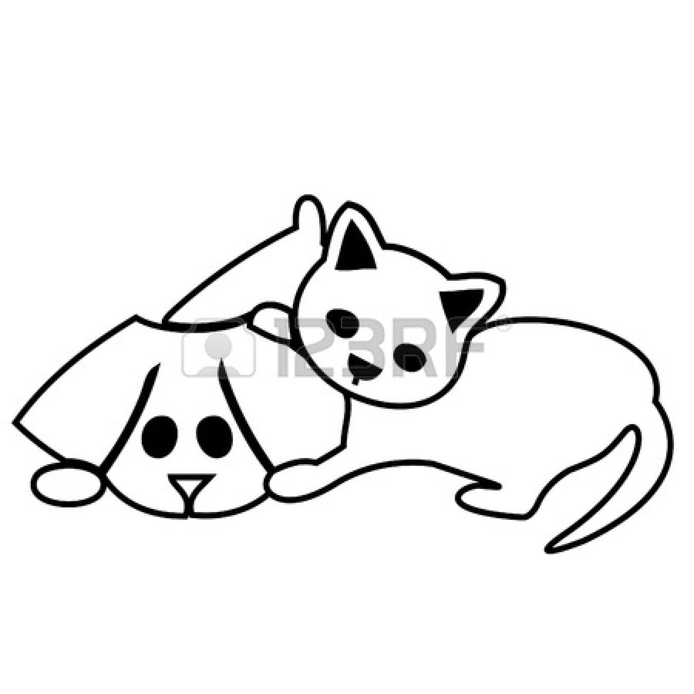 Dog In Panda