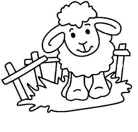 Sheep Coloring Pages Clipart Panda Free Clipart Images