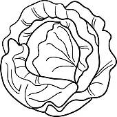 Coloring Pages Of Leafy Vegetables. fruit and vegetable clip ...
