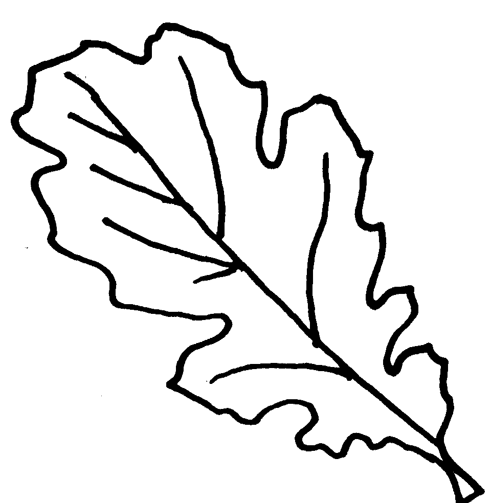 Leaves Coloring Page Latest Pumpkin With Leaves Coloring Page