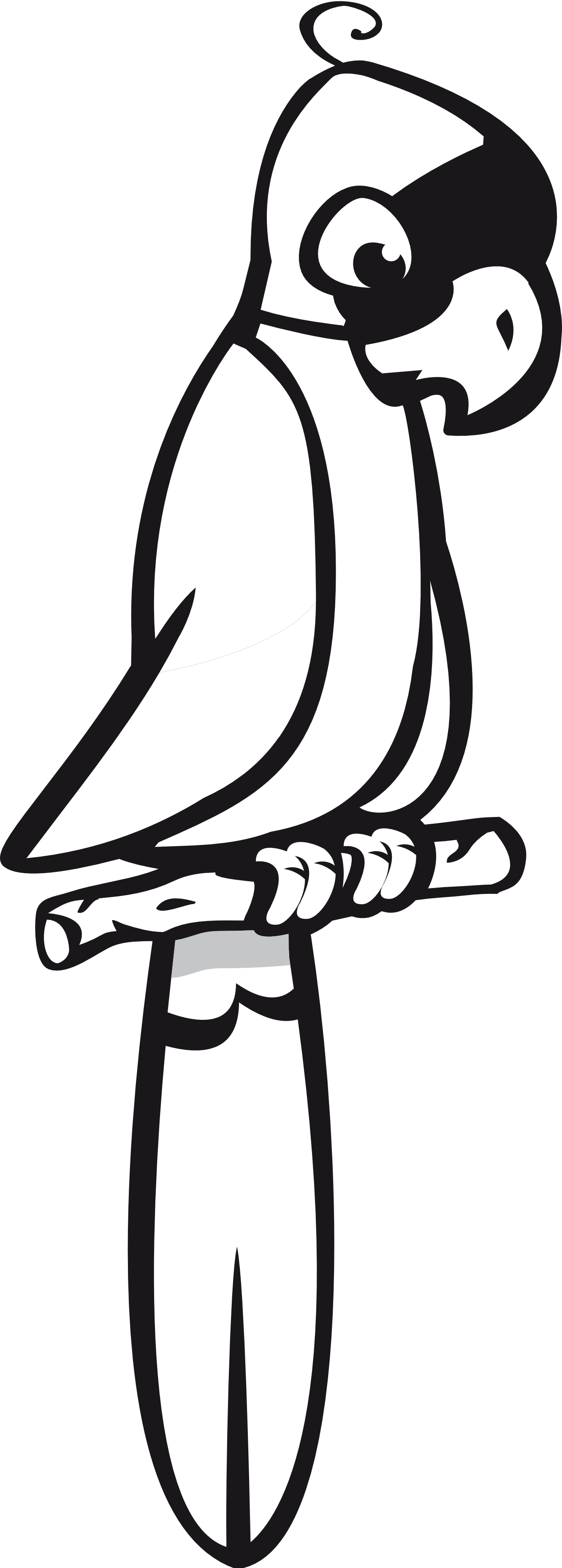 Parrot Clipart Black And White Clipart Panda