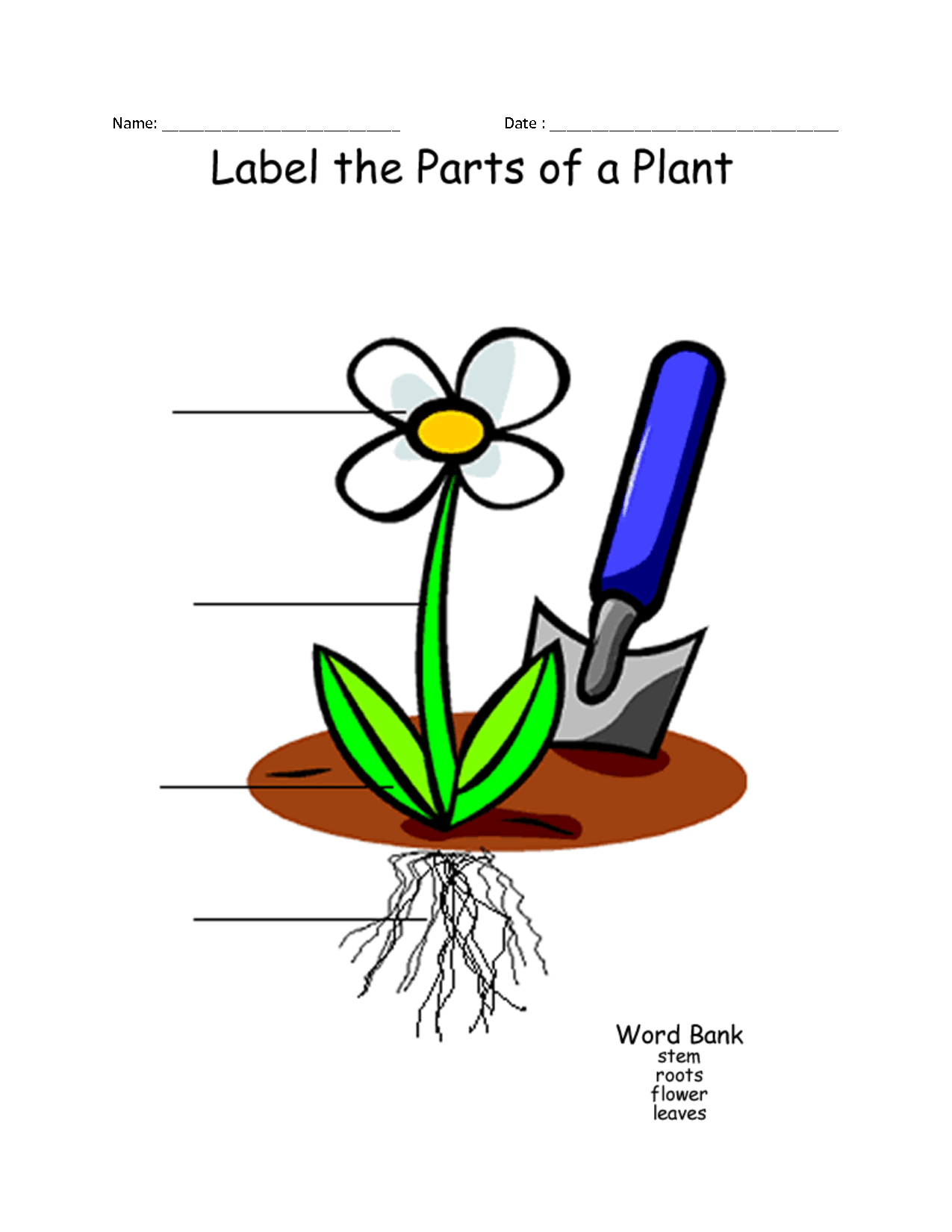 Parts Of A Plant For Kids Clipart Panda