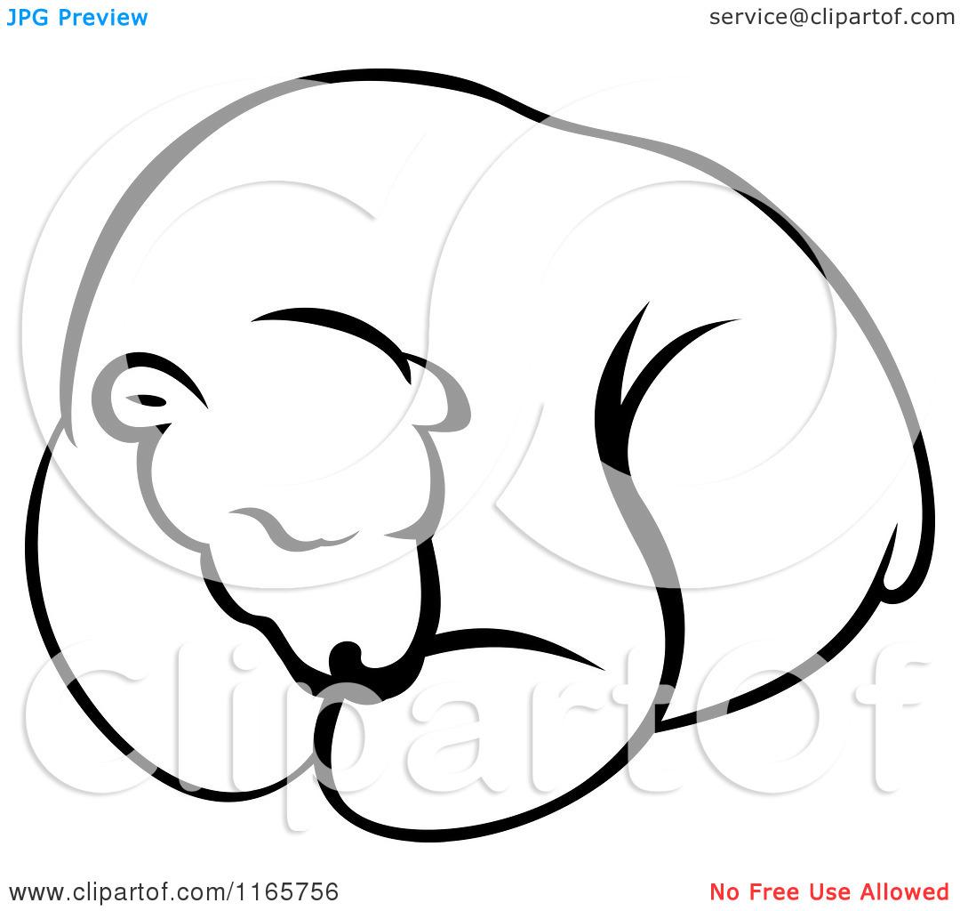 Polar Bear Clip Art Black And White Clipart Panda