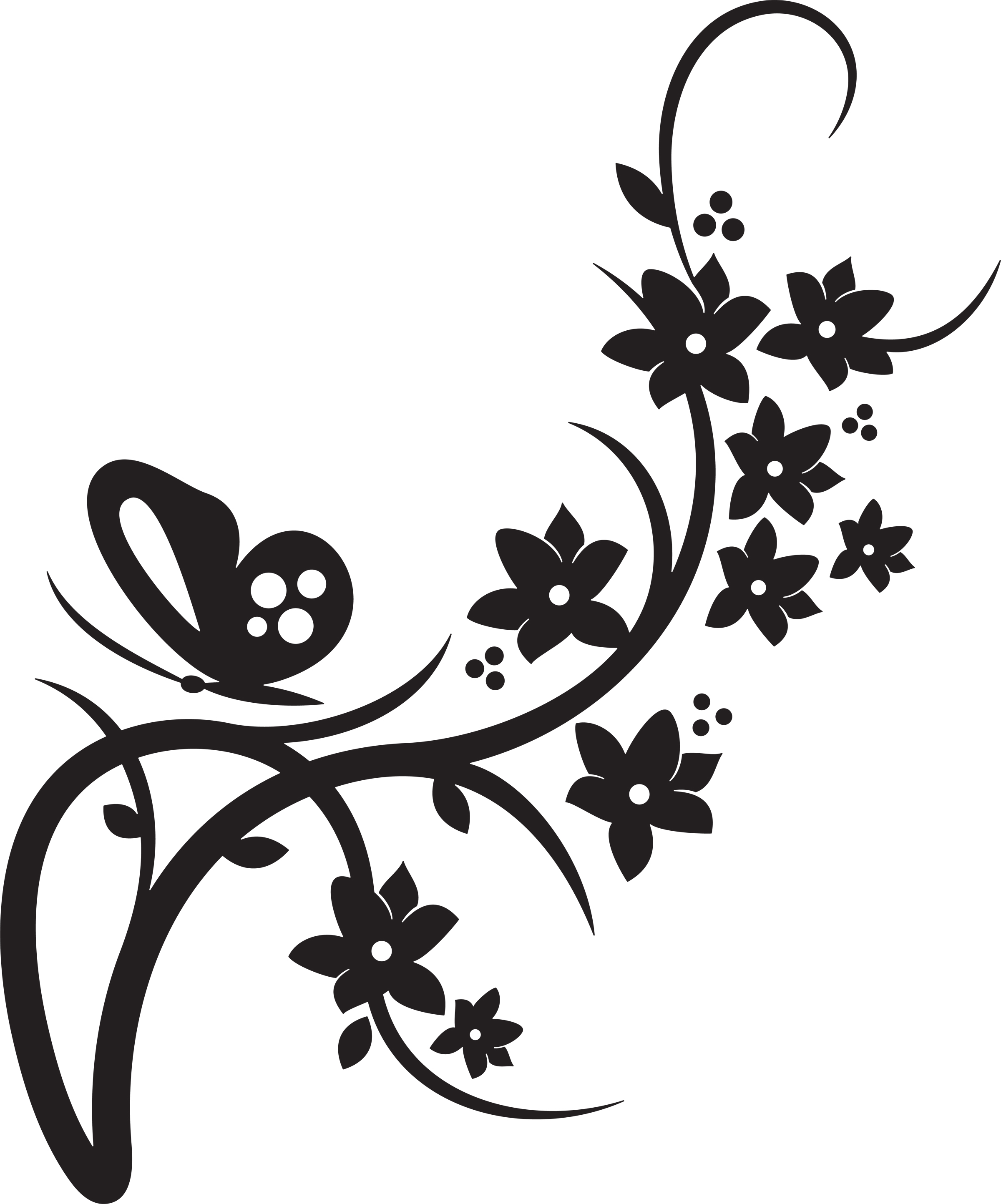 Clipart Flowers And Butterflies Border