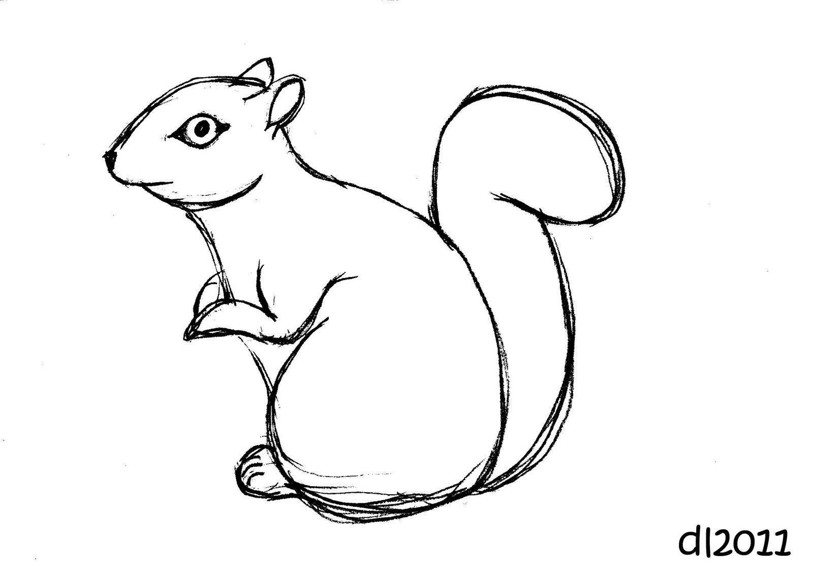 Squirrel Drawing Clipart Panda