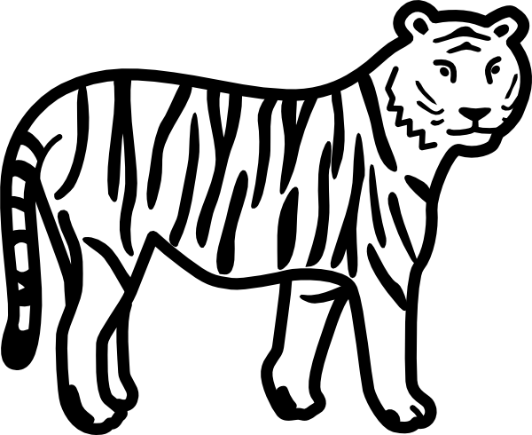 tiger coloring pages tiger coloring page clip art vector online