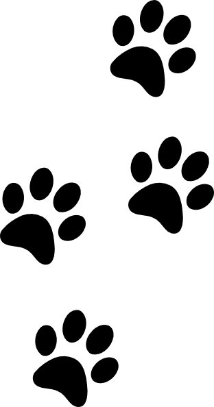 Clipart Tiger Black And White