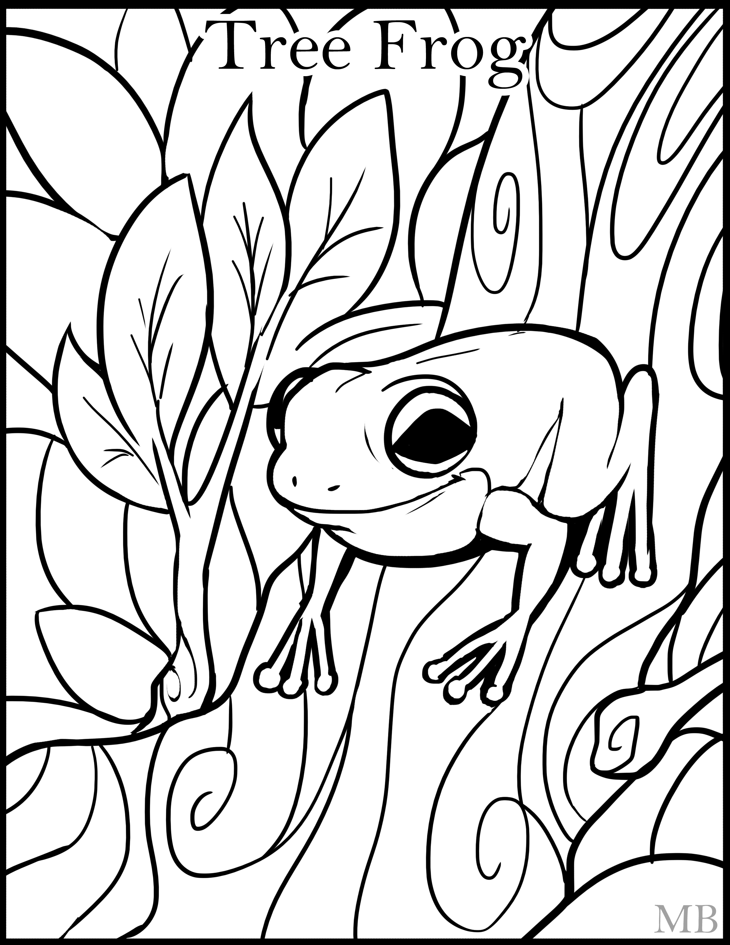 Tree Frog Coloring Pages Clipart Panda