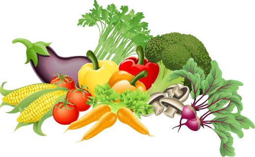 Image result for vegetable clipart
