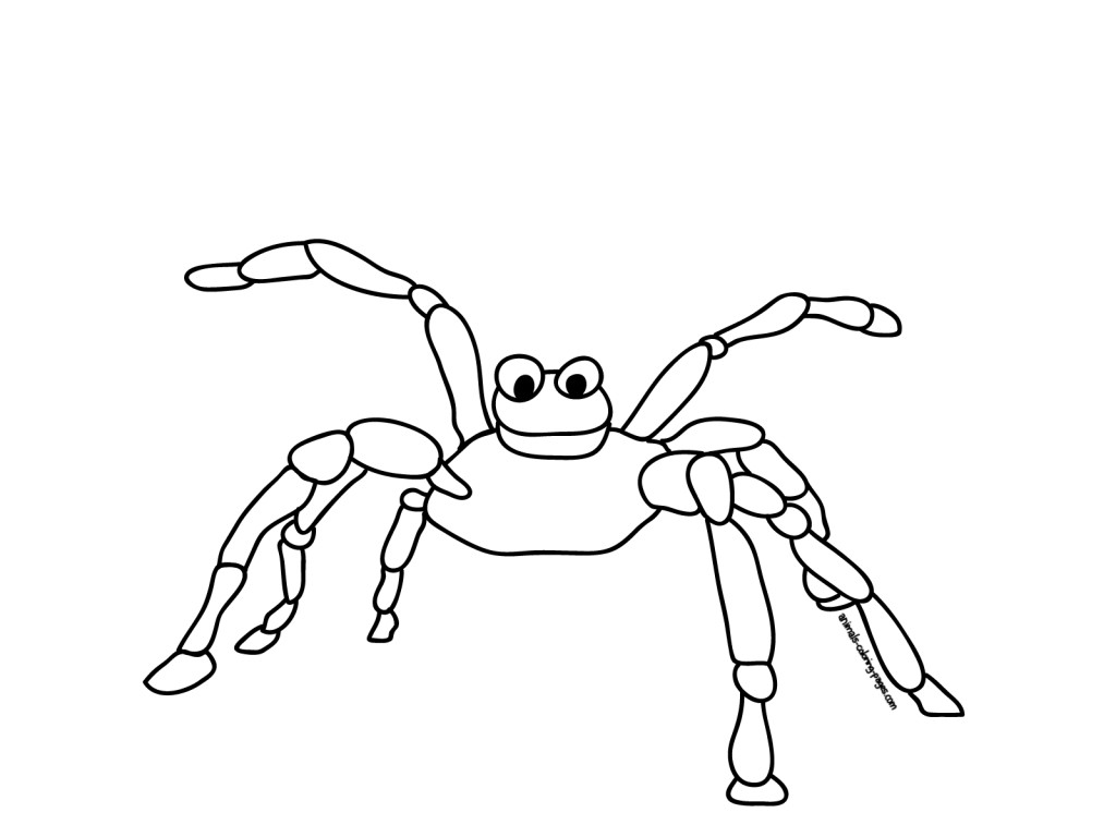 map coloring page spider web coloring pages this your index html page