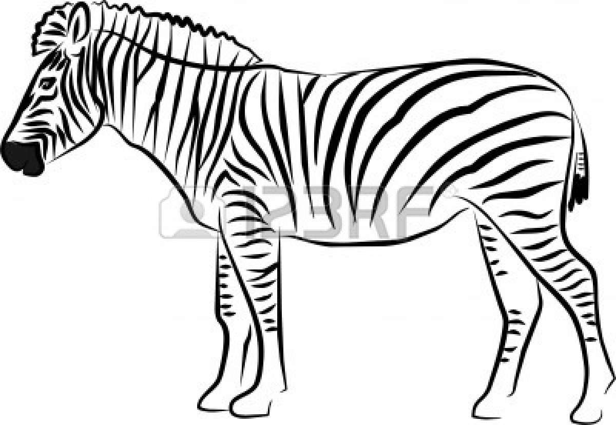 Zebra Clipart Black And White Clipart Panda