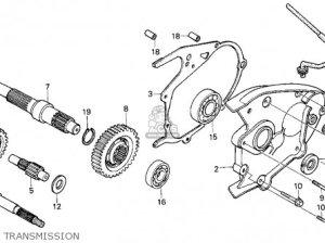 Honda Helix Cn250 Wiring Diagram  Wiring Diagram Pictures