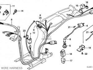 Honda Sh75 Scoopy 1989 (k) Spain parts list partsmanual