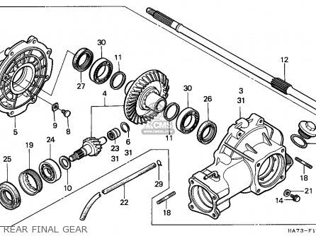 Diagram Honda Fourtrax 300 Rear End Diagram Diagram Schematic