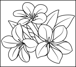 tropical flower coloring page printables apps for kids