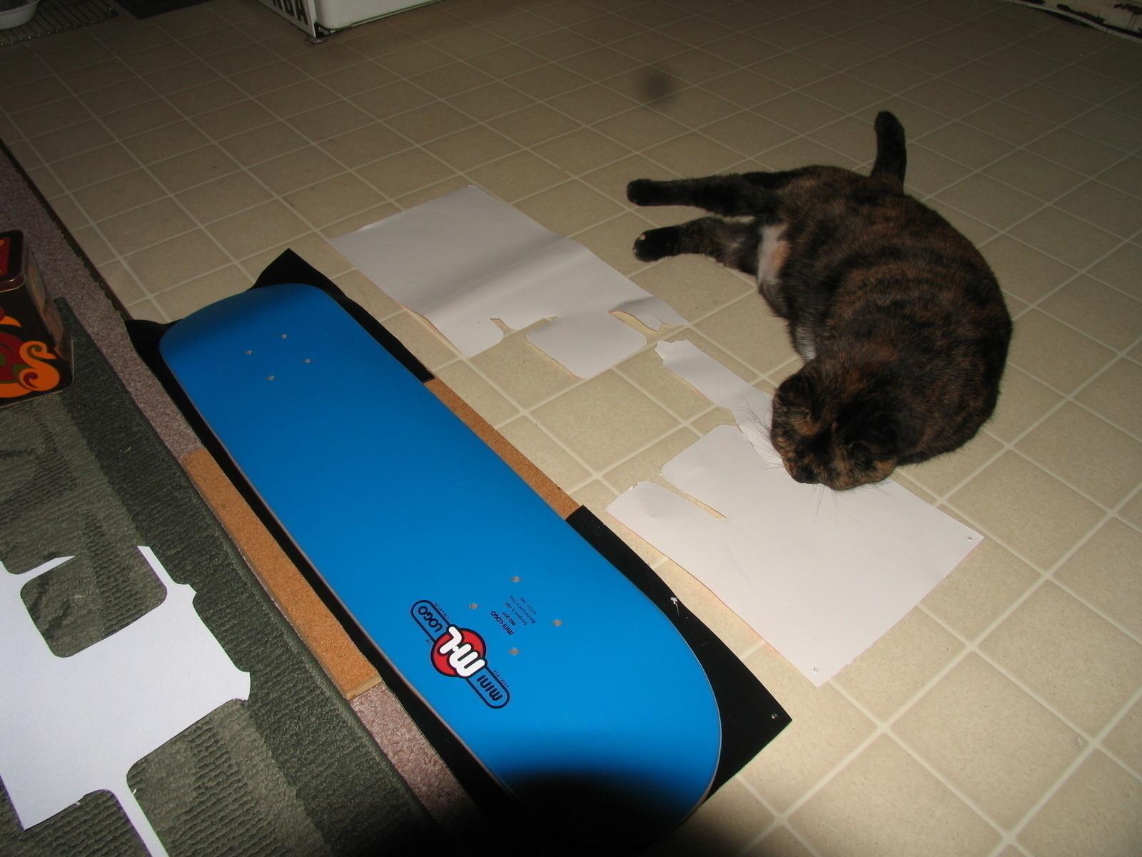 Custom Painted Skateboard Griptape S 183 A Skateboards