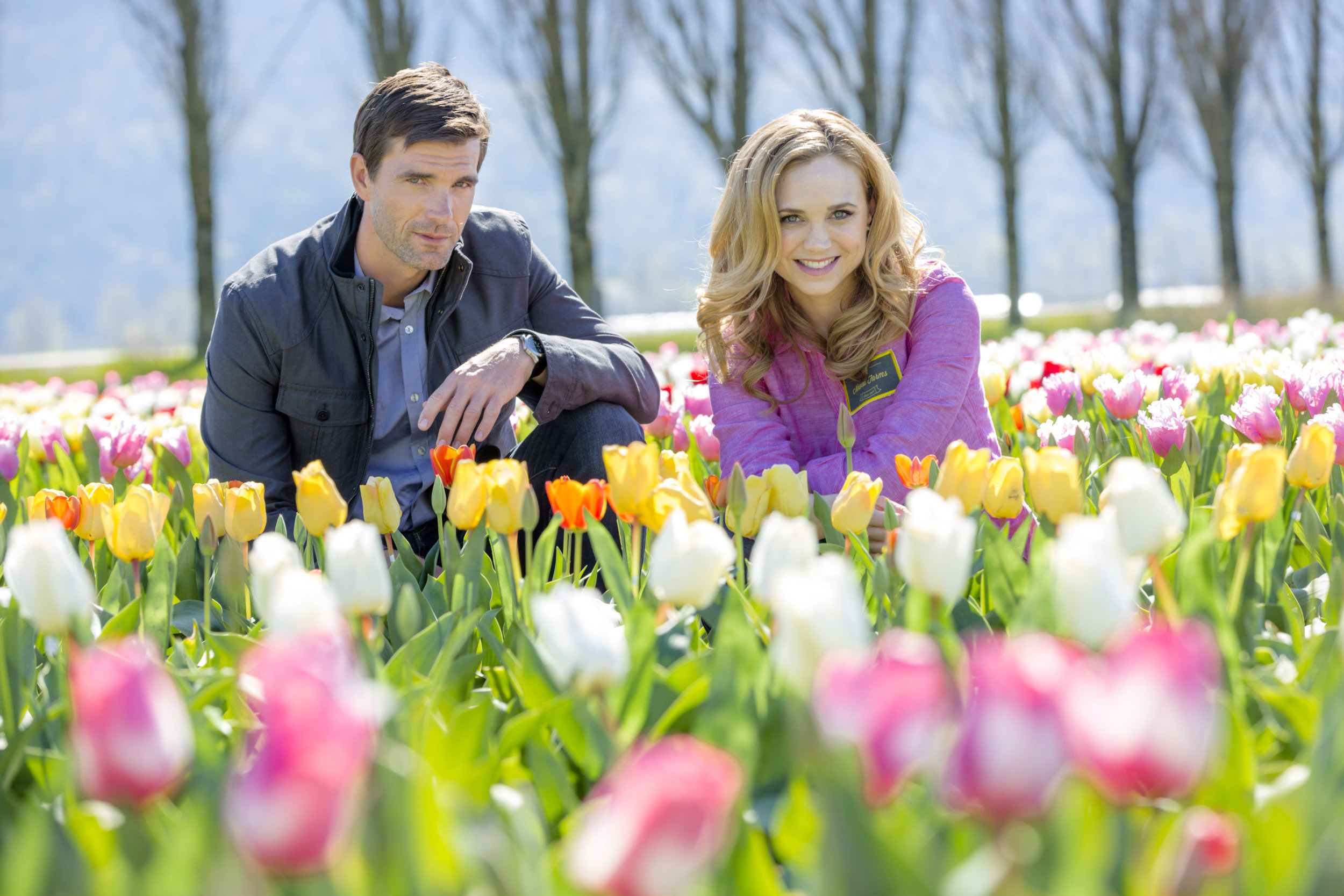 Preview Tulips In Spring Hallmark Channel