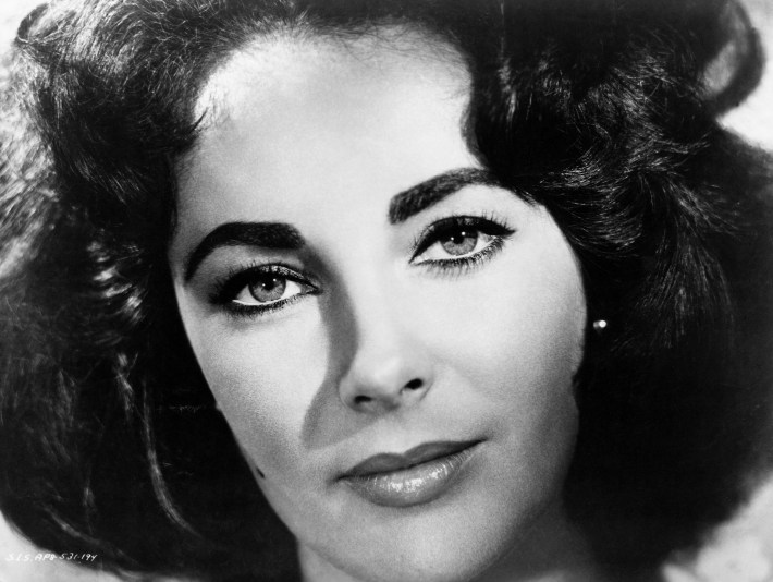 elizabeth taylor: a life in photos | purple clover