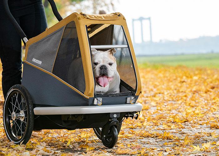 CROOZER Peppa Dog L mit Welpenschutz | Hundeanhänger 2021 4