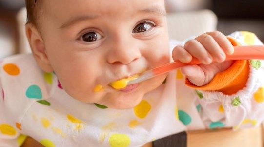 نتيجة بحث الصور عن baby food