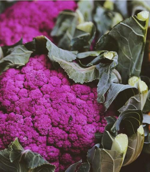 purple-cauliflower-fresh-from-harvest-eat