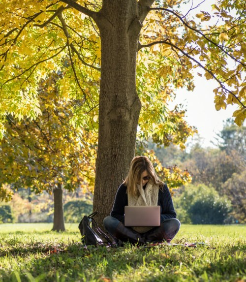 woman-works-on-computer-under-tree