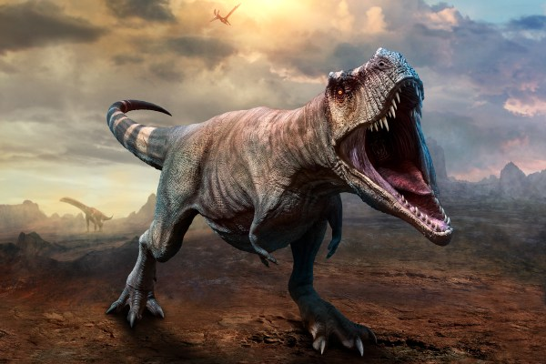 How T. rex Came to Rule the World | Discover Magazine