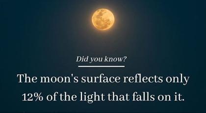 DSC IG promo card moon reflection fact