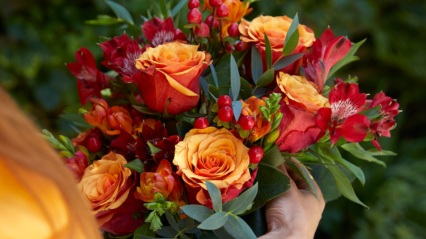 Blumen Verschicken Blumenversand Versandkostenfrei