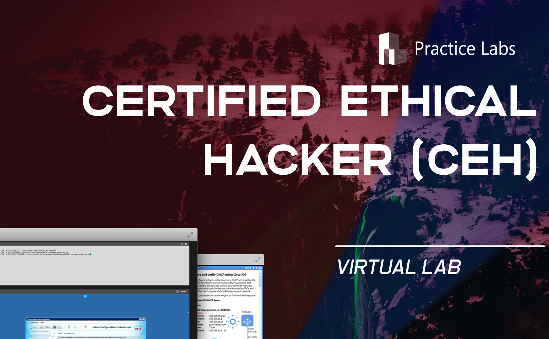 Free Ethical Hacking Course Learn Penetration Testing