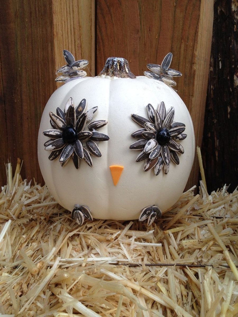 Hand Made White Owl Pumpkin By Taz Creations