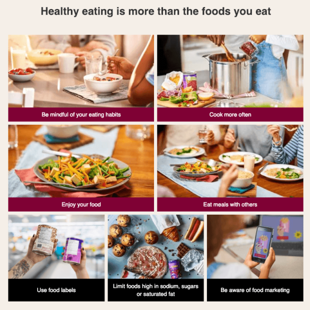 Image result for image canada food guide 2019