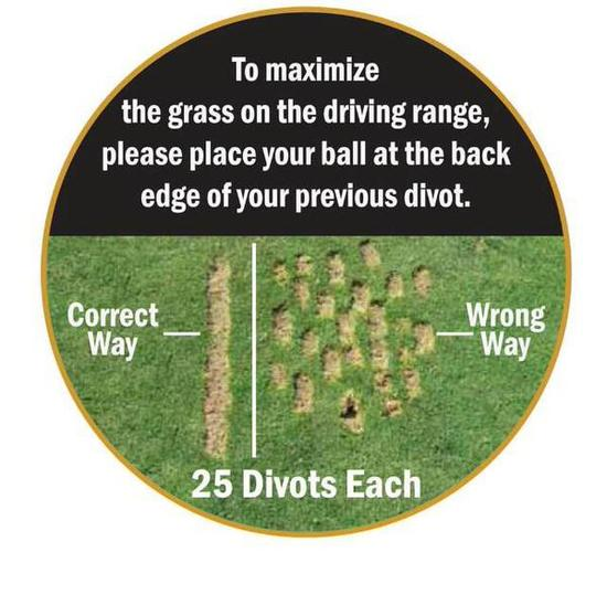 College_Golf-Picture-Divots_1_.jpg