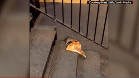 pizzarat.png