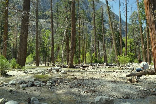 Tenaya Creek, Yosemite Valley