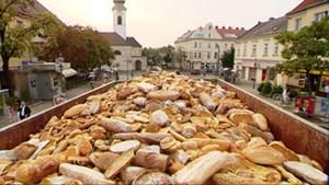 Dokumentarfilme thematisieren Fragen der Ernährung - zwischen Überfluss und Knappheit.