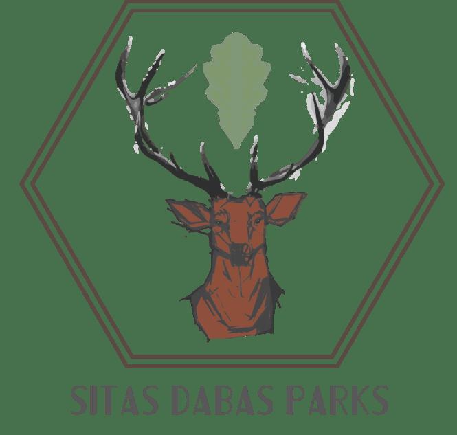 Deer Head Significance The Best Deer 2018