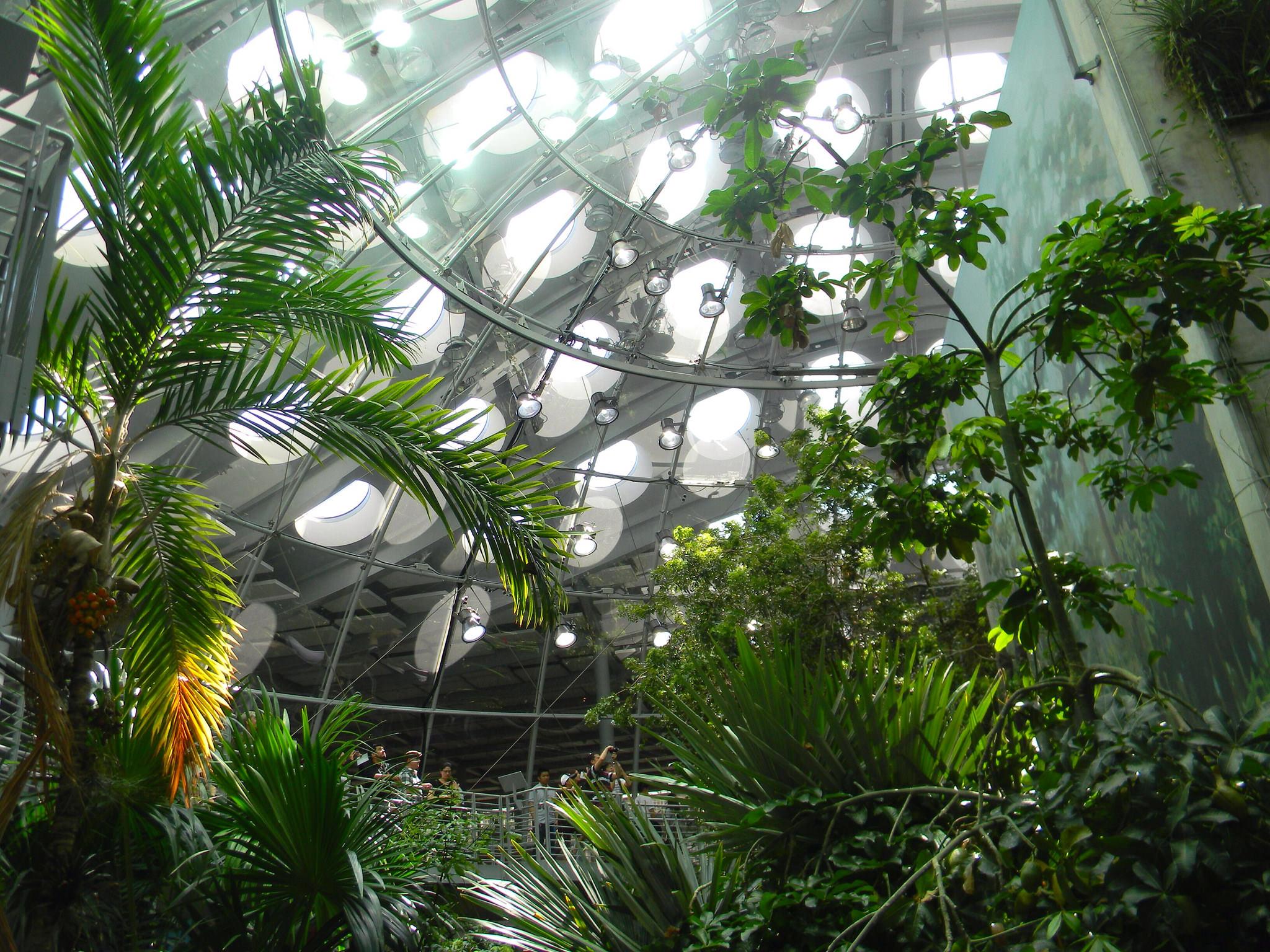19 Indoor Garden Designs Decorating Ideas Design