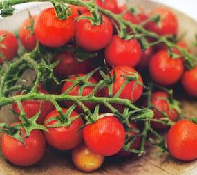 Lima Buah dan Sayur Merah yang Dahsyat Buat Tubuh