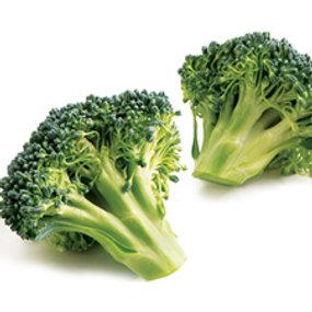 Brokoli si Penangkal Kanker Perut
