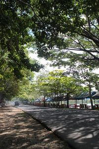 Jalan menuju danau (dok. ACI)