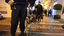Los dos agentes de la unidad cinológica de la Policía Local ayer con sus perros en labores de seguridad por la calle San Rafael.