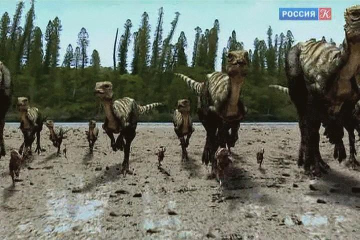 Qantassaurus Pictures Amp Facts The Dinosaur Database