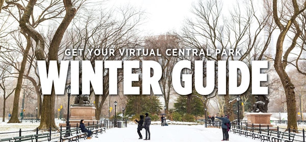 Get the Winter Guide