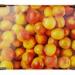 Sherif Orchards; Amcor/Orora; 36.3675