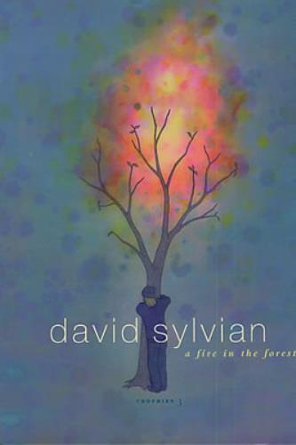 David Sylvian A Fire In The Forest - Trophies 3 book UK SYLBKAF334843