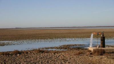 Marisma de Doñana desecada en diciembre / Carlos Dávila.