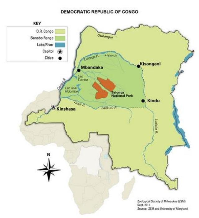 Africa Oil & Gas: Congo to open two national parks up to oil
