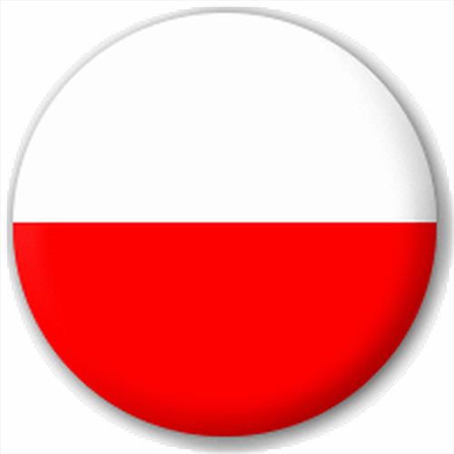 Small 25mm Lapel Pin Button Badge Novelty Poland Polish